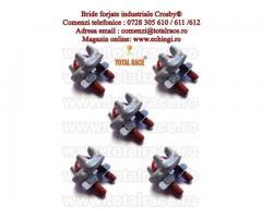 Clipsuri forjate industriale Crosby model G450